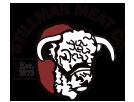Stillman-Logo-Small-9-18-17